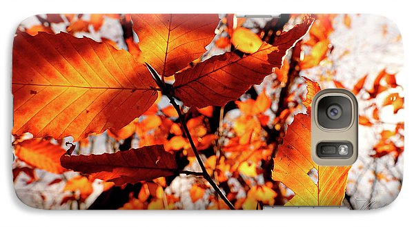 Galaxy Case featuring the photograph Orange Fall Leaves by Meta Gatschenberger