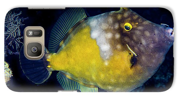Galaxy Case featuring the photograph Orange Filefish by Jean Noren