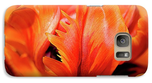 Galaxy Case featuring the photograph Orange Princess Tulip Natures Abstract by Julie Palencia