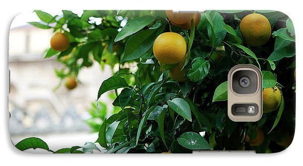 Galaxy Case featuring the photograph Orange Tree by Lorraine Devon Wilke