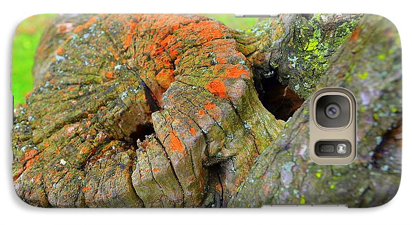 Orange Tree Stump Galaxy S7 Case