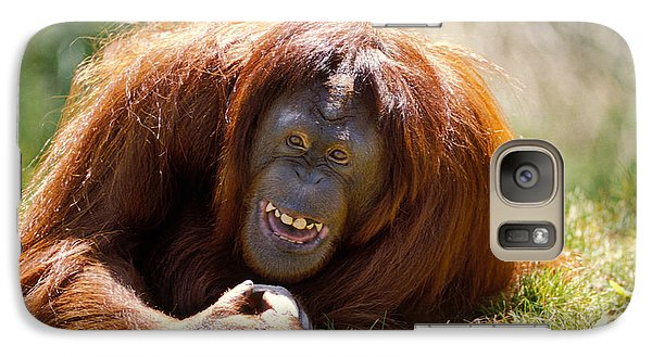 Orangutan Galaxy S7 Case - Orangutan In The Grass by Garry Gay