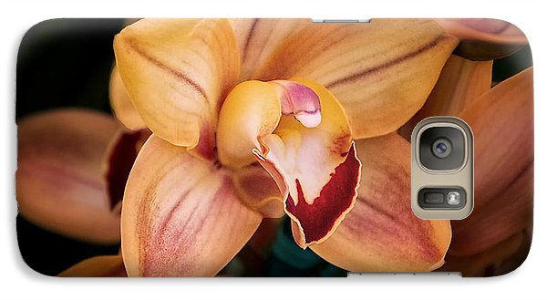 Orchid - A Quiet Elegance Galaxy Case by Tom Mc Nemar
