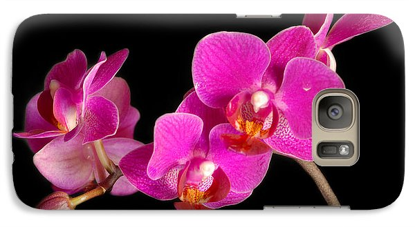 Galaxy Case featuring the photograph Orchids by Alana Ranney