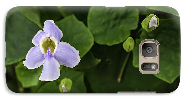 Galaxy Case featuring the photograph Orchids  by Jingjits Photography