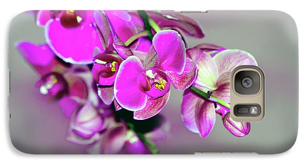 Galaxy Case featuring the photograph Orchids On Gray by Ann Bridges