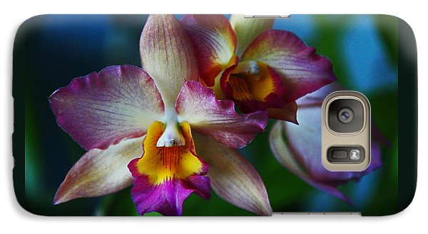Galaxy Case featuring the photograph Orchids - Trio by Kerri Ligatich