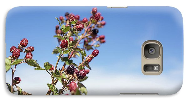 Galaxy Case featuring the photograph Organic Handpicked Home Orchard Raspberries,blackberries From Bu by Jingjits Photography