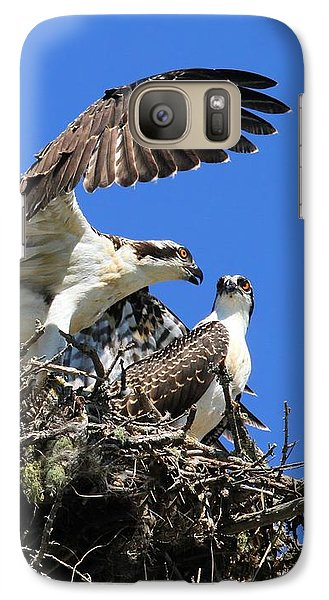 Osprey Chicks Ready To Fledge Galaxy S7 Case