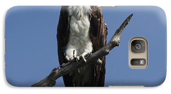Galaxy Case featuring the photograph Osprey Eyeing The Gulf by Barbara Bowen