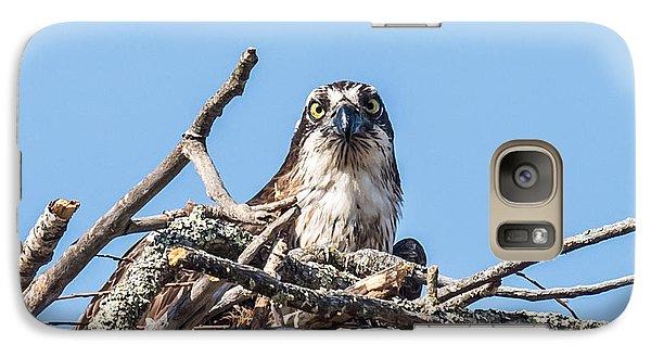 Osprey Eyes Galaxy S7 Case