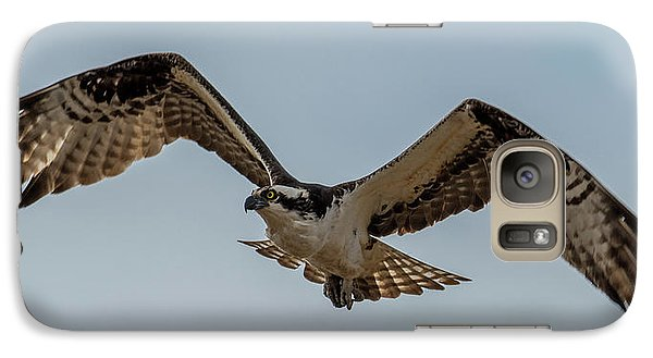 Osprey Flying Galaxy S7 Case