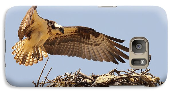 Galaxy Case featuring the photograph Osprey Hovering Above Nest by Max Allen