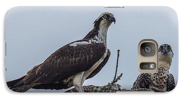 Osprey On A Nest Galaxy S7 Case
