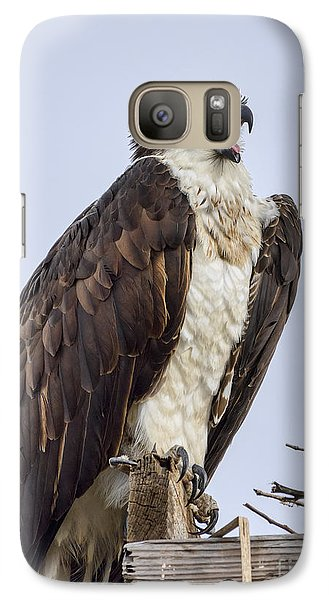 Galaxy Case featuring the photograph Osprey On Its Perch by Eddie Yerkish
