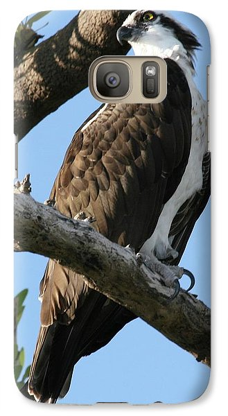Galaxy Case featuring the photograph Osprey - Perched by Jerry Battle