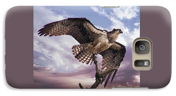 Osprey Wing Galaxy S7 Case