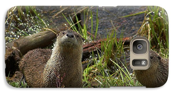 Galaxy Case featuring the photograph Otters by Steve Stuller