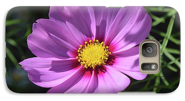 Galaxy Case featuring the photograph Out In The Sun. by Terence Davis