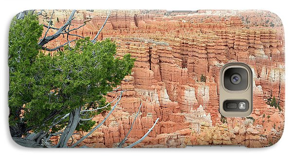 Galaxy Case featuring the photograph Overlooking Bryce Canyon by Bruce Gourley