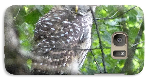 Galaxy Case featuring the photograph Owl On A Limb by Donald C Morgan