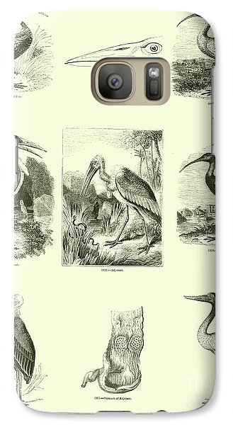 Page From The Pictorial Museum Of Animated Nature  Galaxy S7 Case