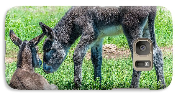 Galaxy Case featuring the photograph Pair Of Burros by Jerry Cahill