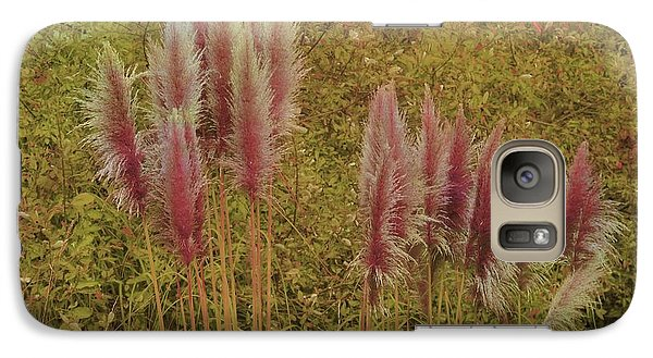 Galaxy Case featuring the photograph Pampas Grass by Athala Carole Bruckner