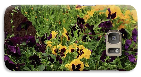 Galaxy Case featuring the photograph Pansies by Kim Henderson