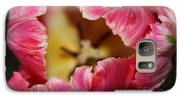 Galaxy Case featuring the photograph Parrot Tulip by Jolanta Anna Karolska