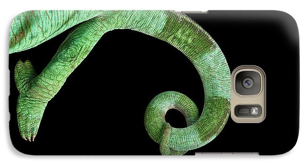 Parson Chameleon, Calumma Parsoni On Black Background, Top View Galaxy S7 Case by Sergey Taran
