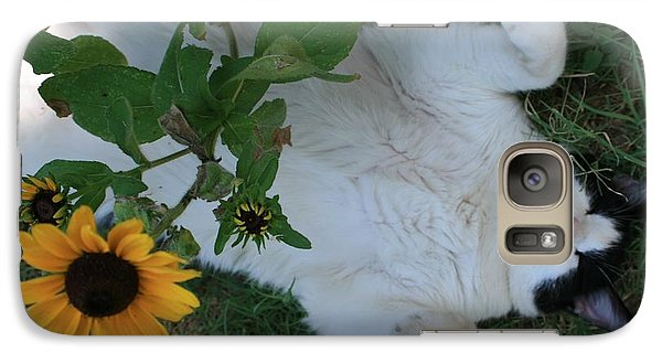 Galaxy Case featuring the photograph Passed Out Under The Daisies by Marna Edwards Flavell