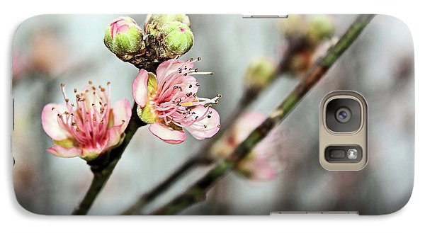 Galaxy Case featuring the photograph Peach Blossom by Kristin Elmquist