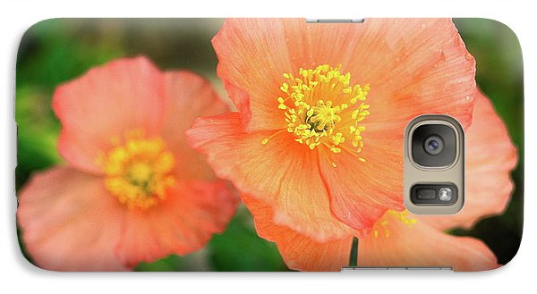 Galaxy Case featuring the photograph Peach Poppies by Sally Weigand