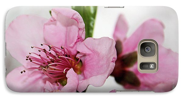 Galaxy Case featuring the photograph Plum Blossom by Kristin Elmquist