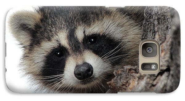 Galaxy Case featuring the photograph Peek-a-boo by Shane Bechler