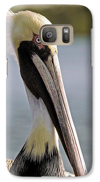 Galaxy Case featuring the photograph Pelican Portrait by Sally Weigand
