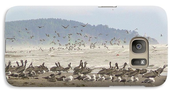 Galaxy Case featuring the photograph Pelicans And Gulls by Pamela Patch