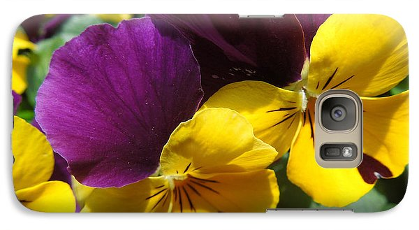 Galaxy Case featuring the photograph Pella Pansies by Peg Toliver