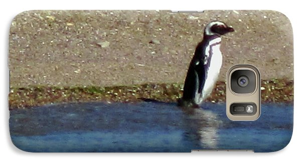 Penguin On The Beach Galaxy S7 Case by Sandy Taylor
