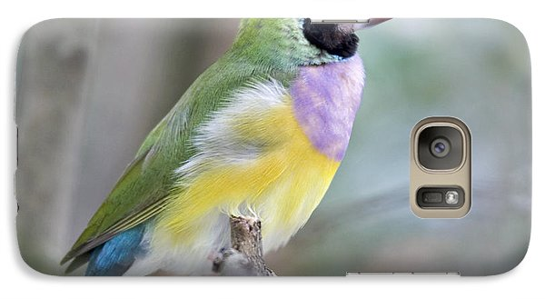 Finch Galaxy S7 Case - Perched Gouldian Finch by Glennis Siverson
