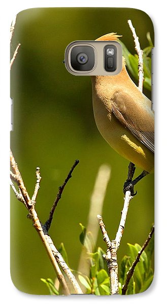 Perfectly Perched Galaxy Case by Adam Jewell
