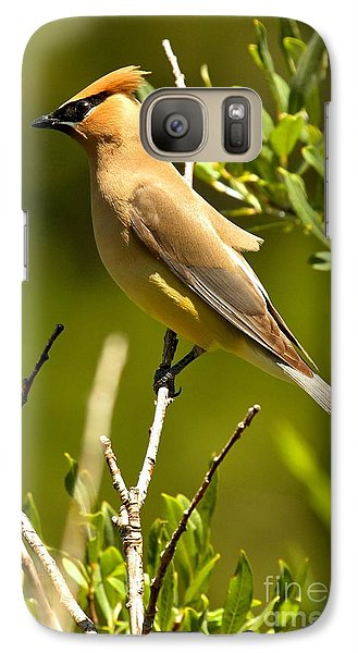 Cedar Waxing Galaxy S7 Case - Perfectly Perched by Adam Jewell