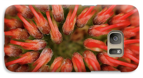Galaxy Case featuring the photograph Perseverance by Stephen Mitchell