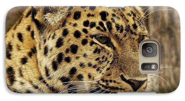 Galaxy Case featuring the photograph Pesive by Gary Bridger