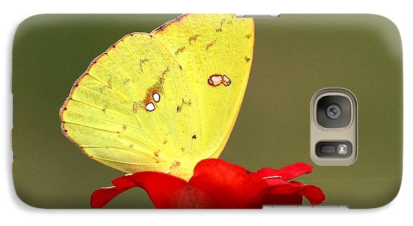 Galaxy Case featuring the photograph Petals And Wings by Sheila Brown