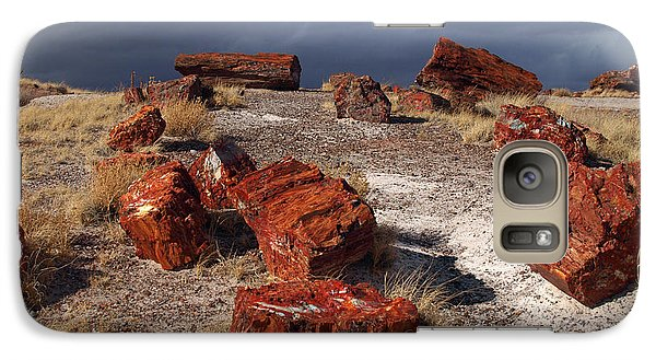 Galaxy Case featuring the photograph Petrified Forest National Park by James Peterson