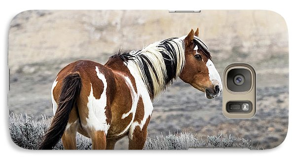 Picasso - Wild Mustang Stallion Of Sand Wash Basin Galaxy S7 Case