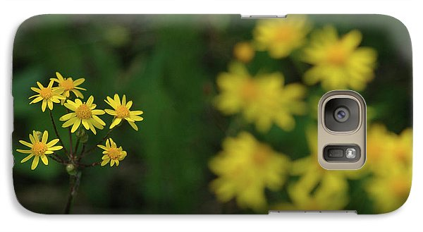 Galaxy Case featuring the photograph Pick Me Daisies by LeeAnn McLaneGoetz McLaneGoetzStudioLLCcom