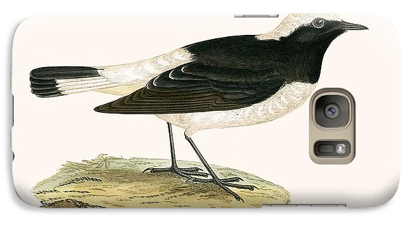 Flycatcher Galaxy S7 Case - Pied Wheatear by English School